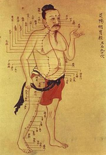 Acunpunctuur punten over het lichaam